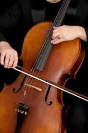 bowed string instrument cello cello bow close up